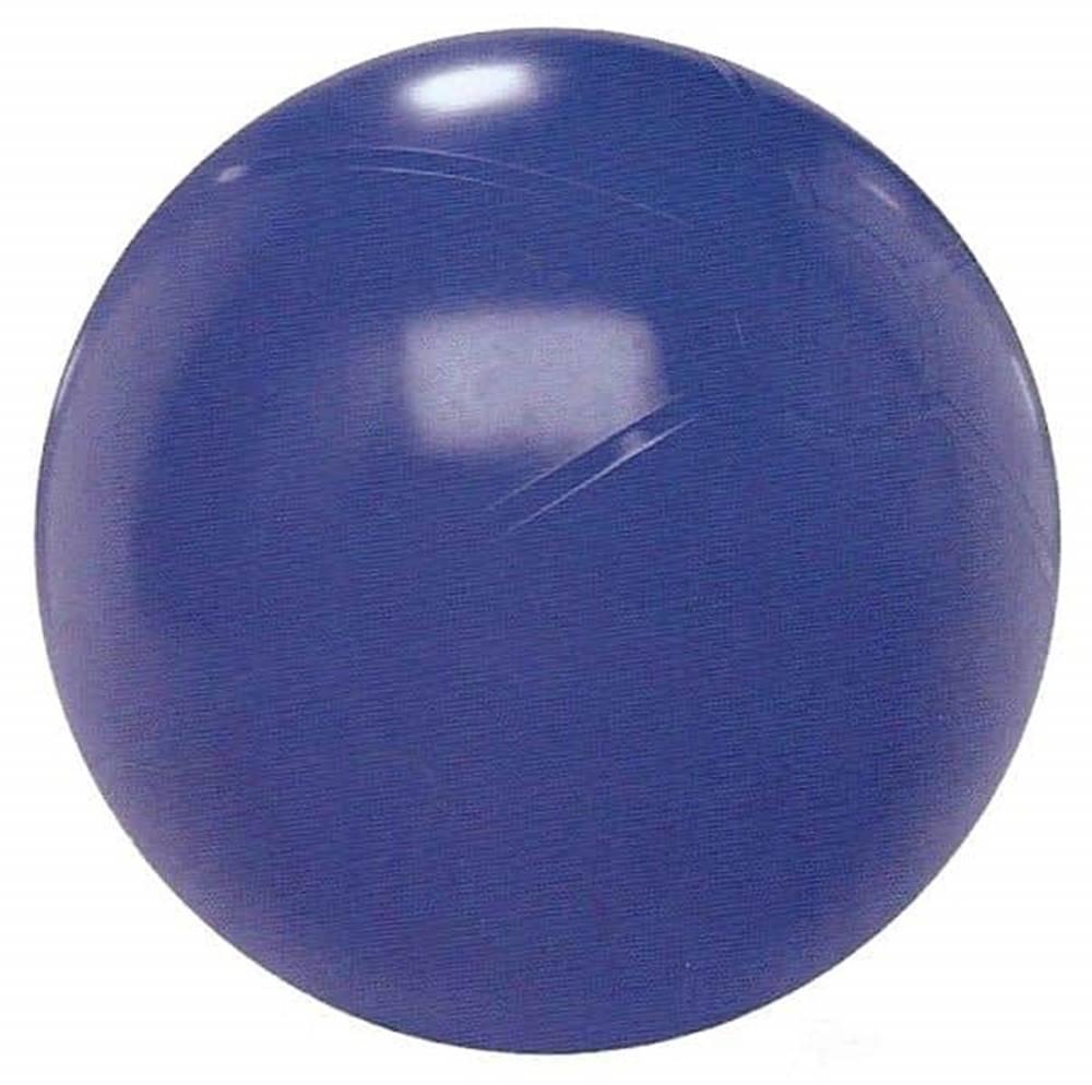 Sedco Gymnastický míč 75cm EXTRA FITBALL - Fialová