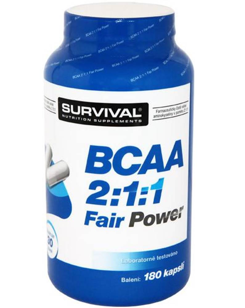Survival BCAA 2:1:1 Fair Power 150tbl.